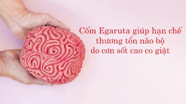 Cốm Egaruta giúp cung cấp năng lượng cho não bộ, bảo vệ tế bào thần kinh